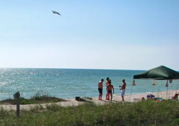 Escape the polar vortex and warm up in Tampa Bay
